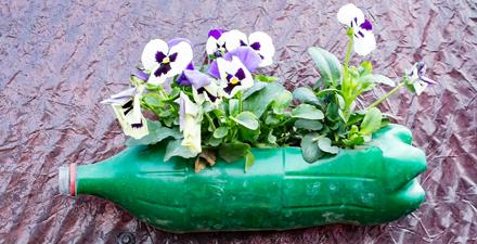 plant based plastic