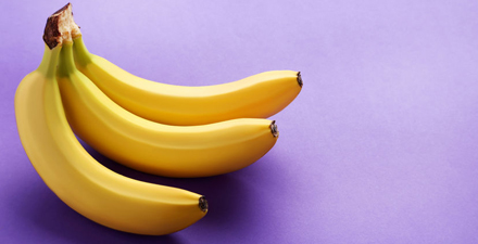 genetic modification of bananas